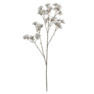 Blossom Stem (3pk) White Brown