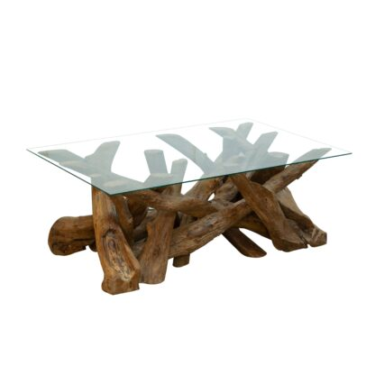 Branchwood Coffee Table with Glass Top - Medium