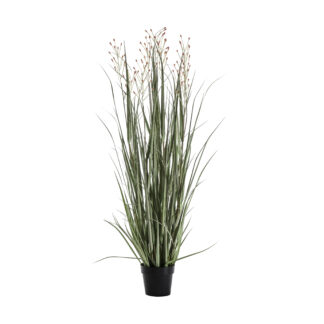 Potted Grass with 3 Heads Green/Russet