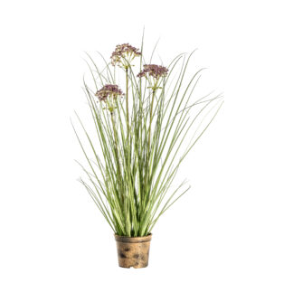 Potted Grass with 3 Heads Green/Red