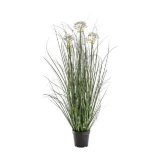 Potted Grass with 4 Heads White