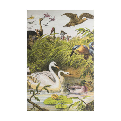 Menagerie Unframed Canvas