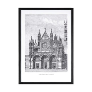 Siena Cathedral Vintage Illustration Framed Art